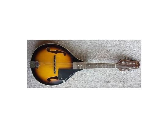 Mandolins   Equipboard®