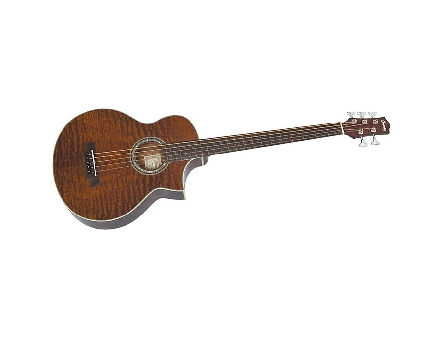 ibanez ewb205qhfe 5 string fretless acoustic bass guitar reviews prices equipboard. Black Bedroom Furniture Sets. Home Design Ideas
