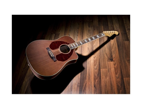 Fender Jimmy Dale Kingman SCE