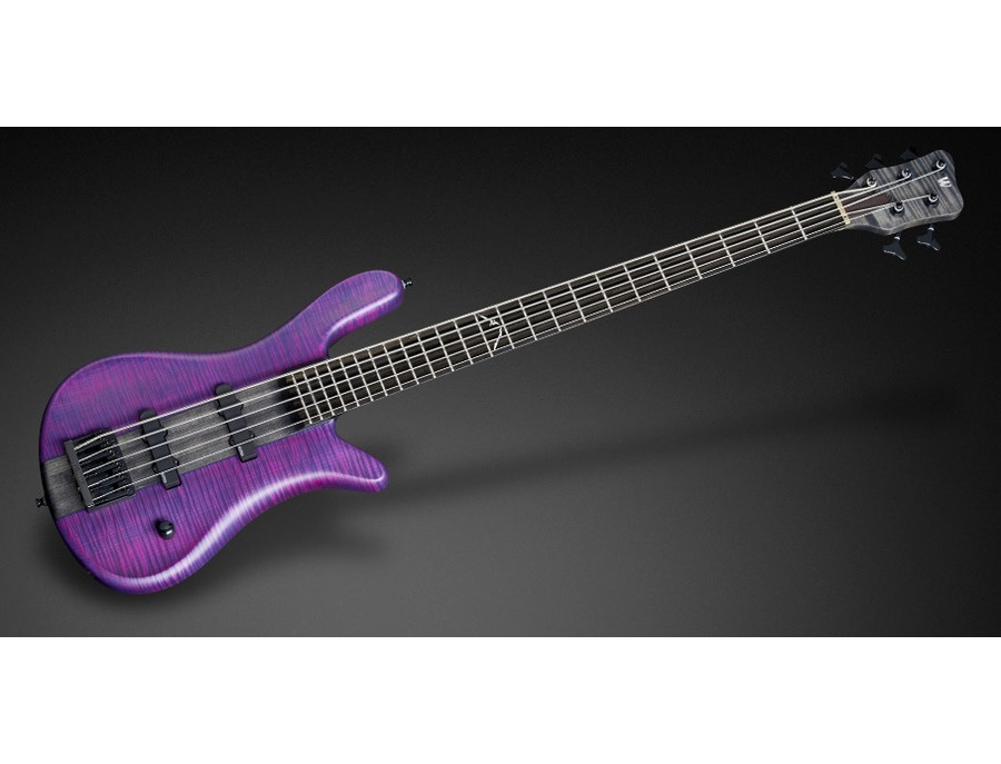 Warwick Steamer Purple Nirvana Black Transparent Satin 5