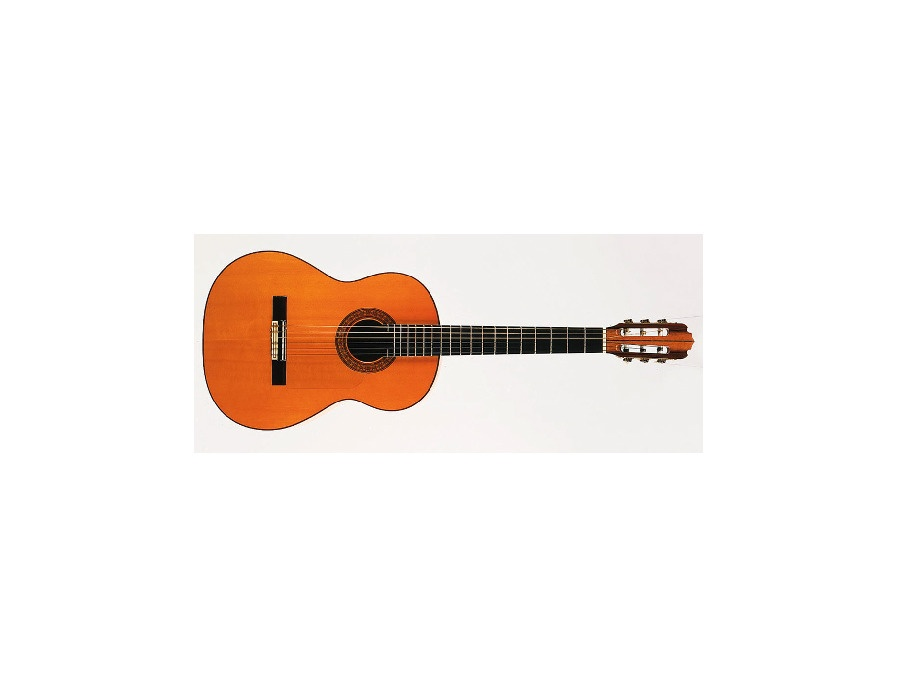 1990 Vincente Sanchis Flamenco Model 41