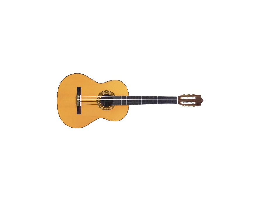 Contemporary Flamenco Guitar