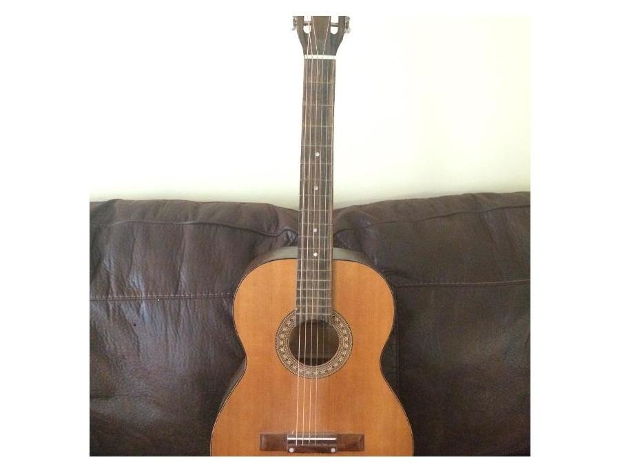Dana acoustic xl