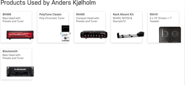 Anders Kjølholm's TC electronic bh 500 Bass head