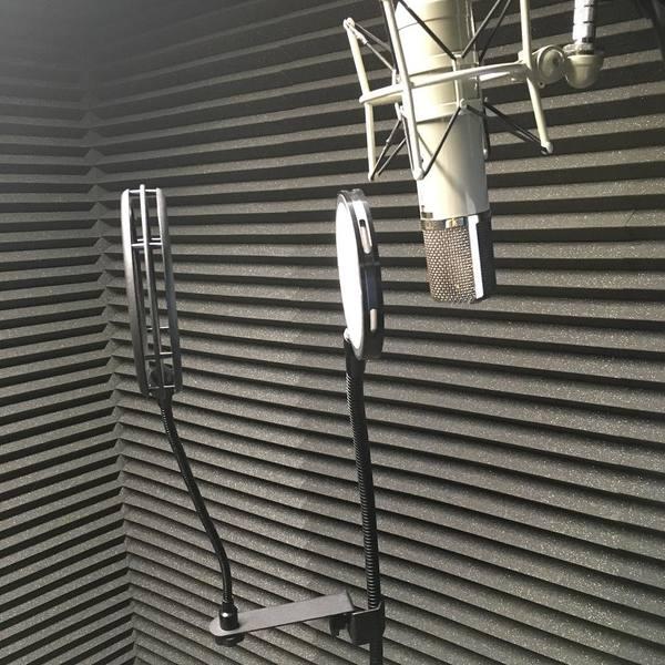 Owl City's Telefunken ELA M 251