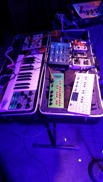 John Dwyer's TC Electronic Ditto Looper Guitar Effects Pedal