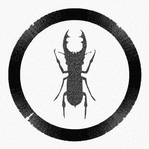 insectstheory